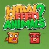 Hayvanlar nasıl beslenir